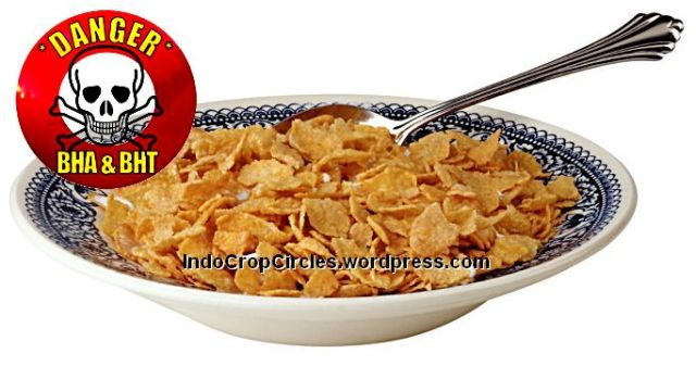banned Pengawet BHA dan BHT Cereal USA