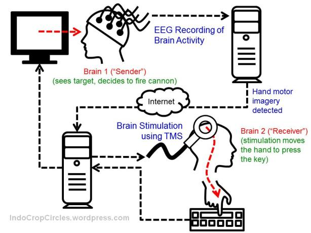 brain to brain interface 02