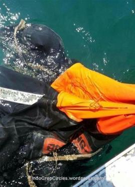 mh370-life raft 01
