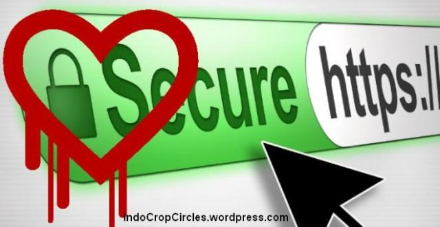 heartbleed-openssl-bug header