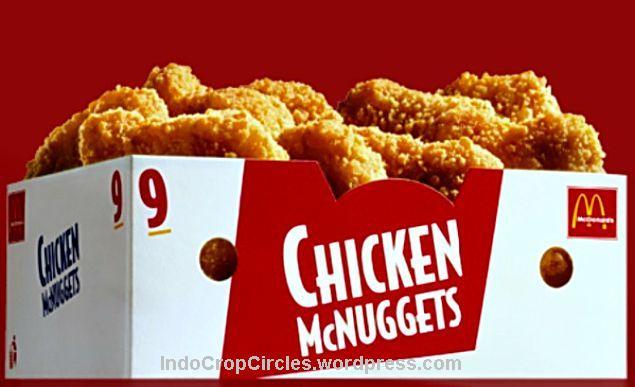 Jangan Pesan Makanan Ini McDonalds Chicken McNuggets