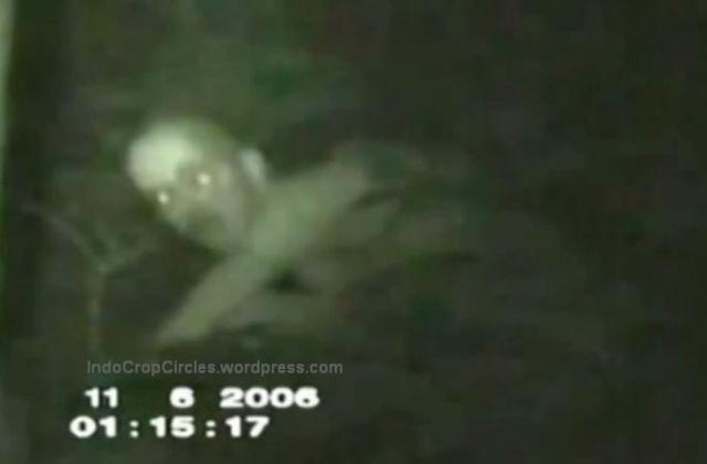 alien ghost on taped 03