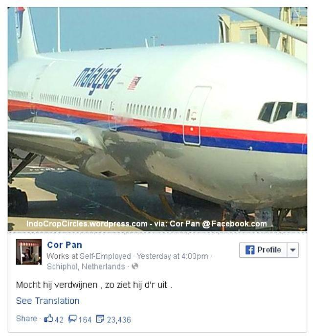 cor pan facebook mh-17