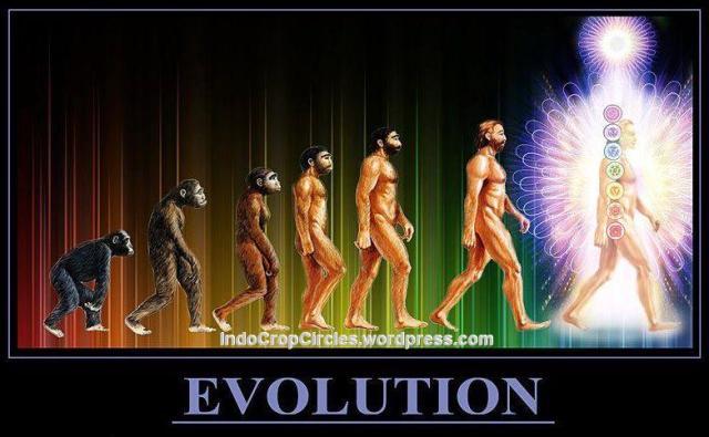 evolution evolusi to endigo