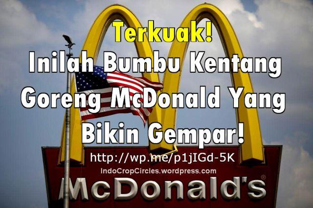 bahaya kentang goreng mcd mc donald banner