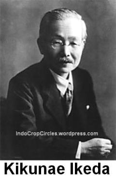 Kikunae_Ikeda MSG