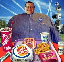 MSG Food-Chemicals