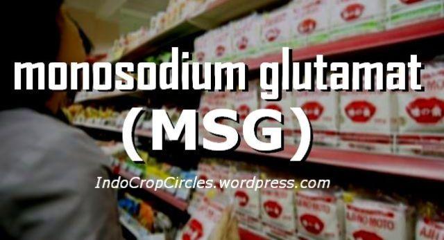 MSG header