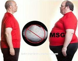 msg makes unhealthy fat