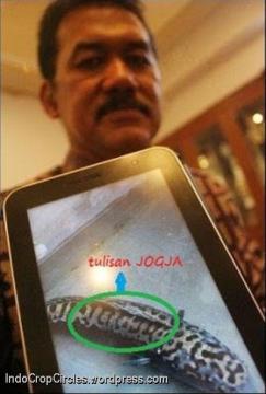 ikan toman tulisan Jogja dan DIY 01