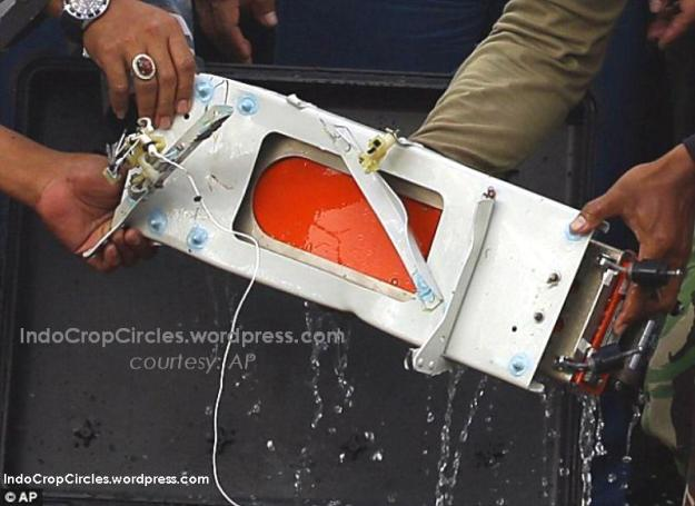 Still dripping with water, military personnel pull out the flight data recorder of the ill-fated AirAsia Flight 8501 that crashed in the Java Sea. (AP).