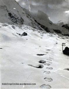 Yeti in nepal 01