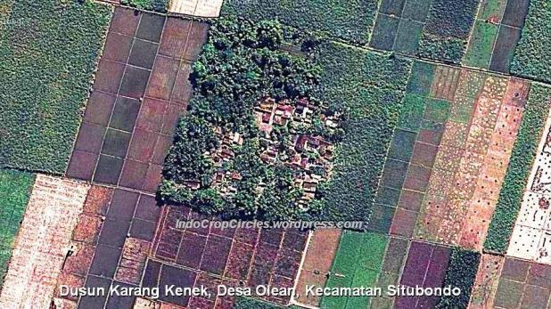 Dusun Karang Kenek, Desa Olean, Kecamatan Situbondo 3