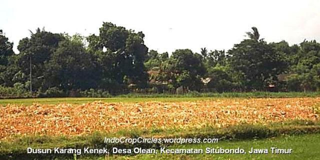 Dusun Karang Kenek, Desa Olean, Kecamatan Situbondo header