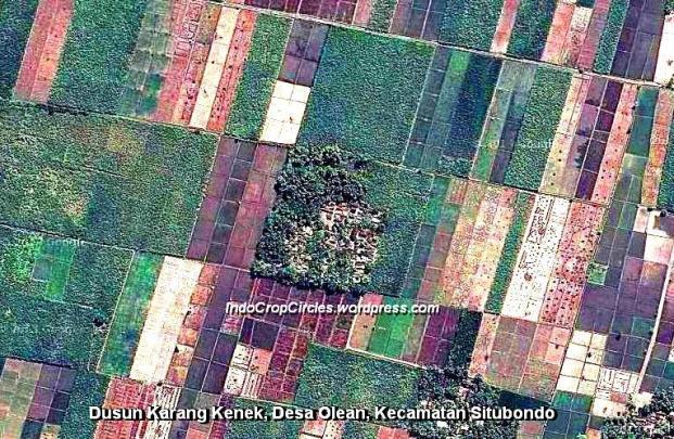 Dusun Karang Kenek, Desa Olean, Kecamatan Situbondo
