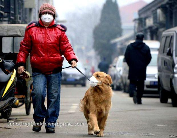 masker pollution polusi