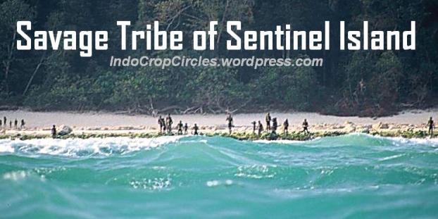 Pulau-Sentinel-Andaman 01