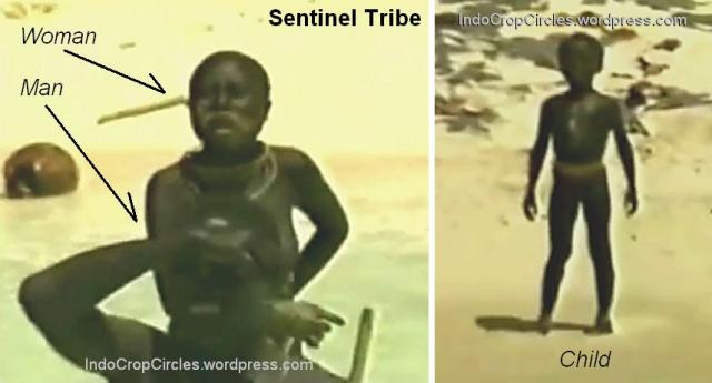 sentinel people tribe 002