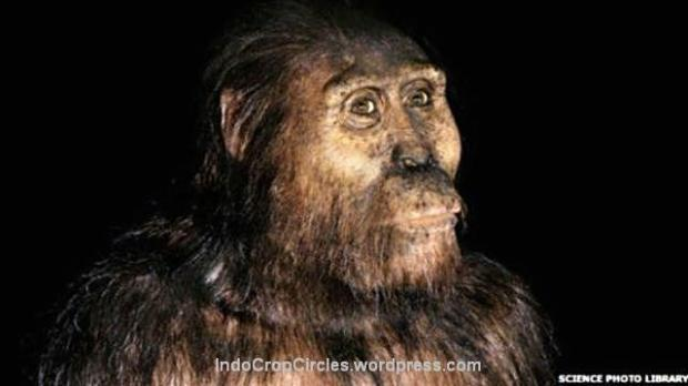 Spesies manusia purba Australopithecus afarensis semula diyakini sebagai nenek moyang manusia modern. (pict: Science Photo Library)