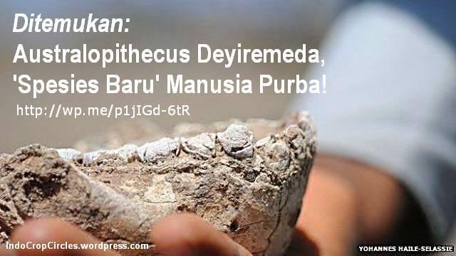 spesies_manusia_purba_Australopithecus Deyiremeda banner