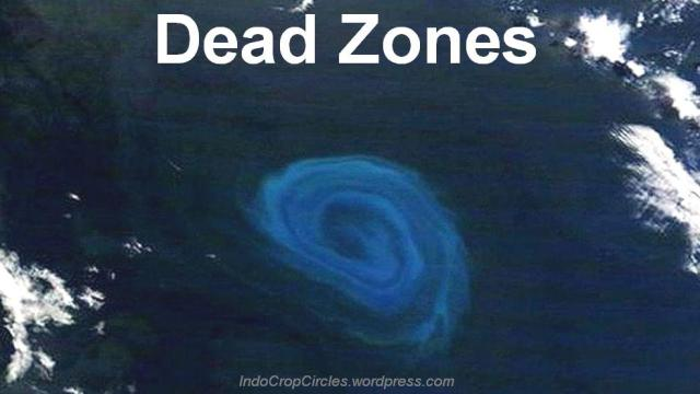 The dead zones could impact the people of Cape Verde