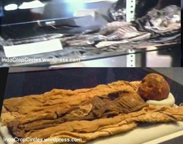 foto-alien roswell diklaim-asli-oleh-ilmuwan-dan-astronot 14
