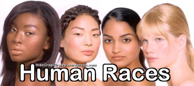 human races ras manusia