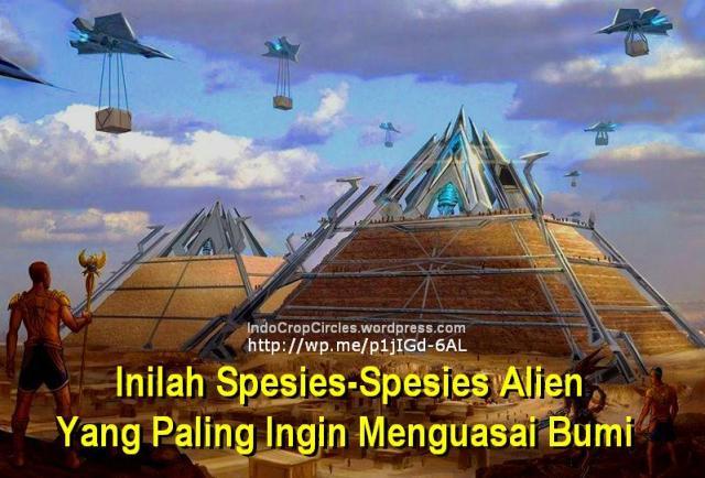 species alien build pyramid piramida