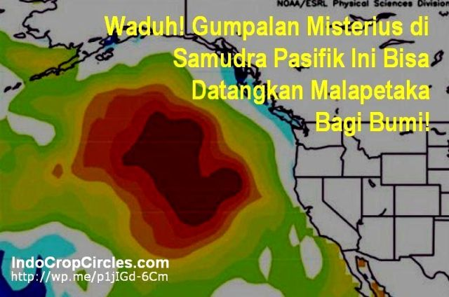 Anomali suhu permukaan Pasifik banner