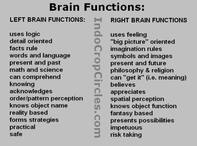 Brain Functions Fungsi otak