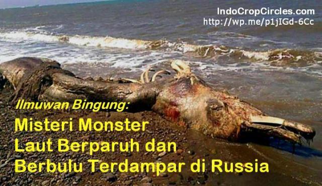 Monster Laut Berparuh dan Berbulu Terdampar di Russia banner