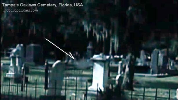 7 Hantu Tampa's Oaklawn Cemetery, Florida, USA