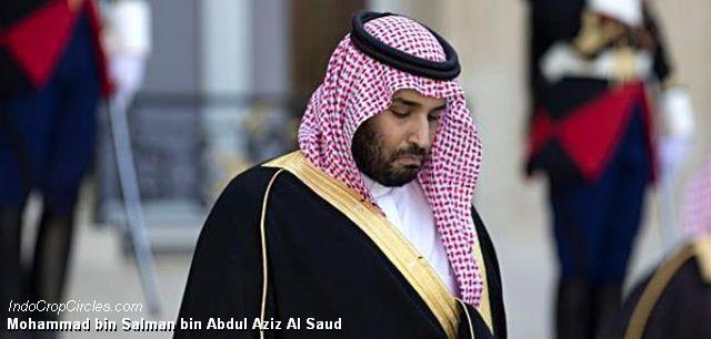 Mohammad bin Salman bin Abdul Aziz Al Saud