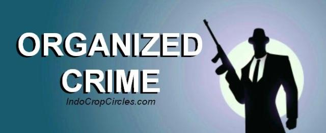 Organized Crimes_header