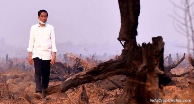 Presiden-Jokowi-ketika-meninjau-lokasi-kebakaran-lahan-di-Kalimantan-Rabu-23-Sep-2015-Foto-Antara