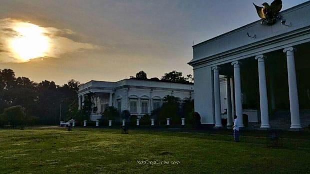 Presiden Jokowi tengah berdiri di depan Istana Bogor, untuk menyaksikan gerhana matahari.