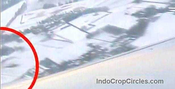 UFO Pesawat Ryanair Netherlands 01