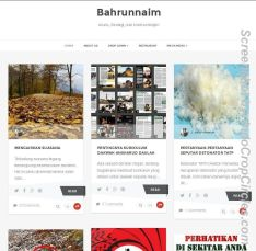 screenshot website bahrun naim web small