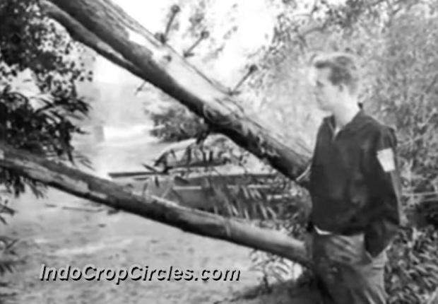 UFO dan Alien di Presque Isle State Park Tahun 1966 05