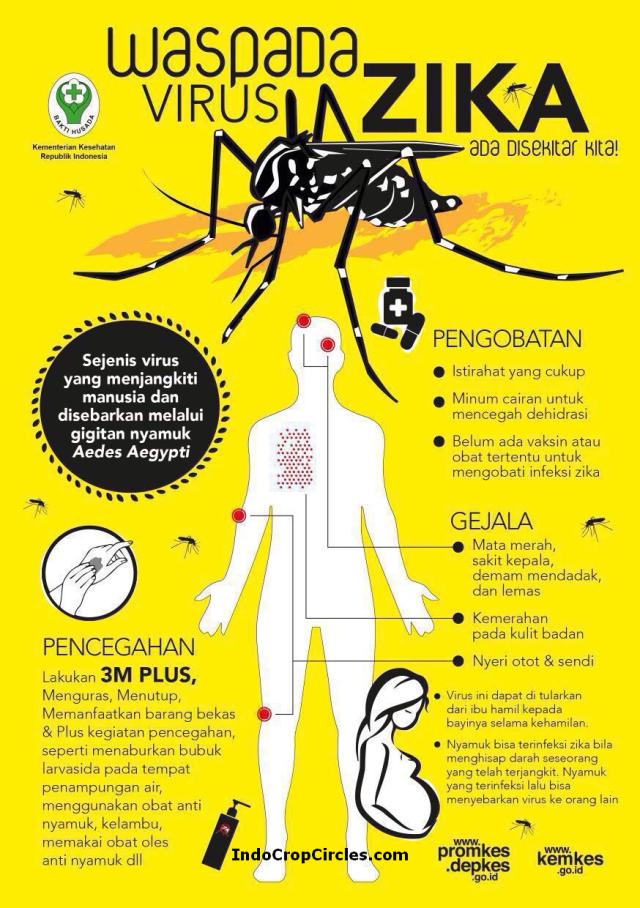 zika virus indonesia