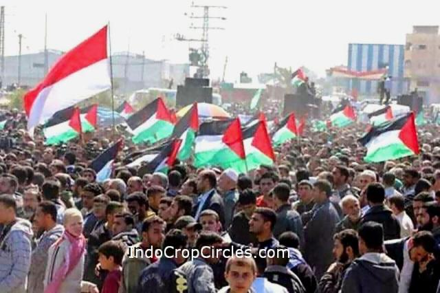 bendera indonesia di palestina