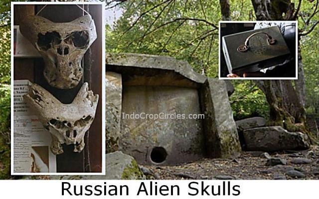 Russian Alien Skulls 1