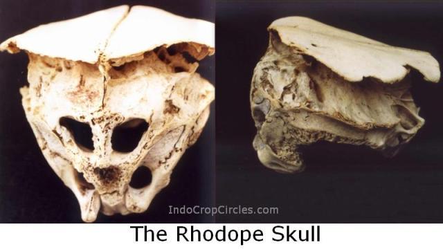 Tengkorak The Rhodope Skull Alien-Skull-Bulgaria