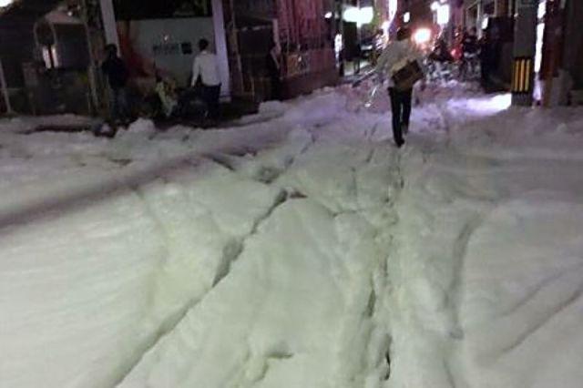 busa-misterius-banjiri-jepang-usai-gempa-bumi 03