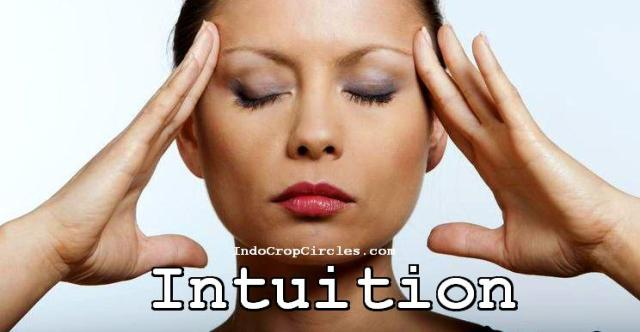 intuition intuisi header