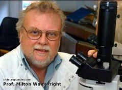 Professor-Milton-Wainwright-Partikel hantu ghost particle