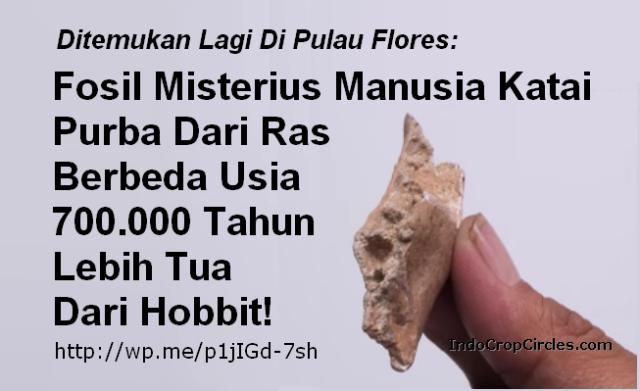 Temuan Hominid Baru di Situs Mata Menge Telusuri Evolusi Homo floresiensis banner