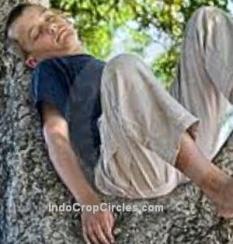 illustrasi anak diatas batang pohon