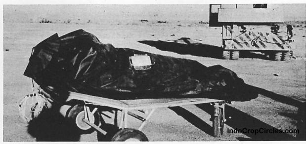 Dokumentasi mayat makhluk asing (alien) saat terjadi Tragedi Roswell 1947 di AS. (FBI/special)