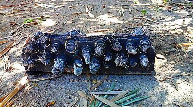 Salah satu benda misterius dari angkasa yang ditemukan di Sumenep, Jawa Timur.
